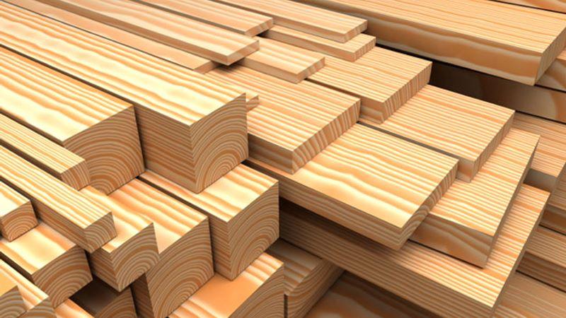 tên khoa học của gỗ thông