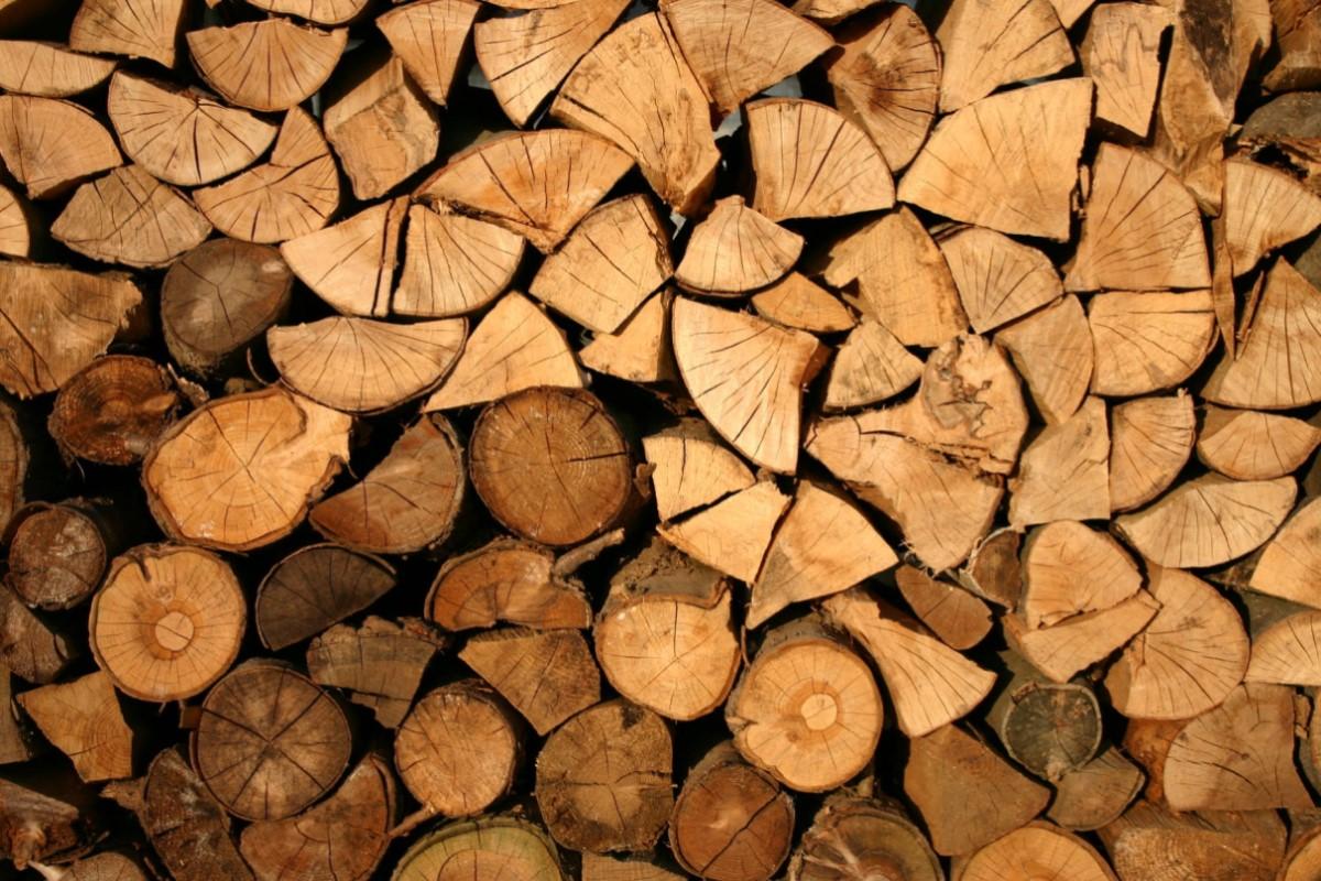thị trường gỗ việt nam