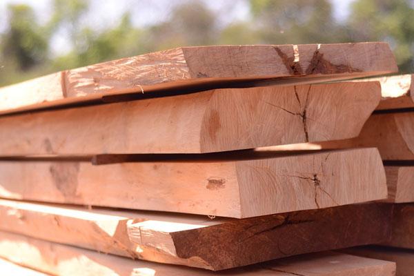 cung cấp gỗ