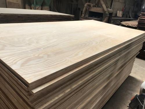 gỗ nguyên kiện
