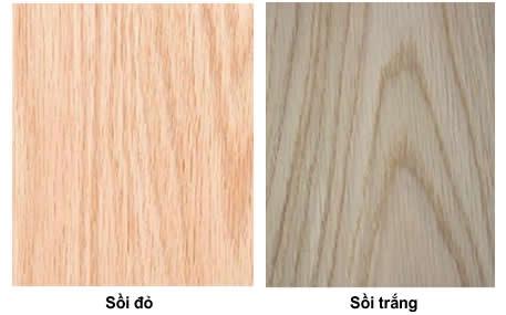 gỗ sồi nga là gì