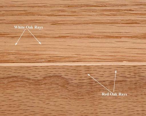 Oak là gỗ gì