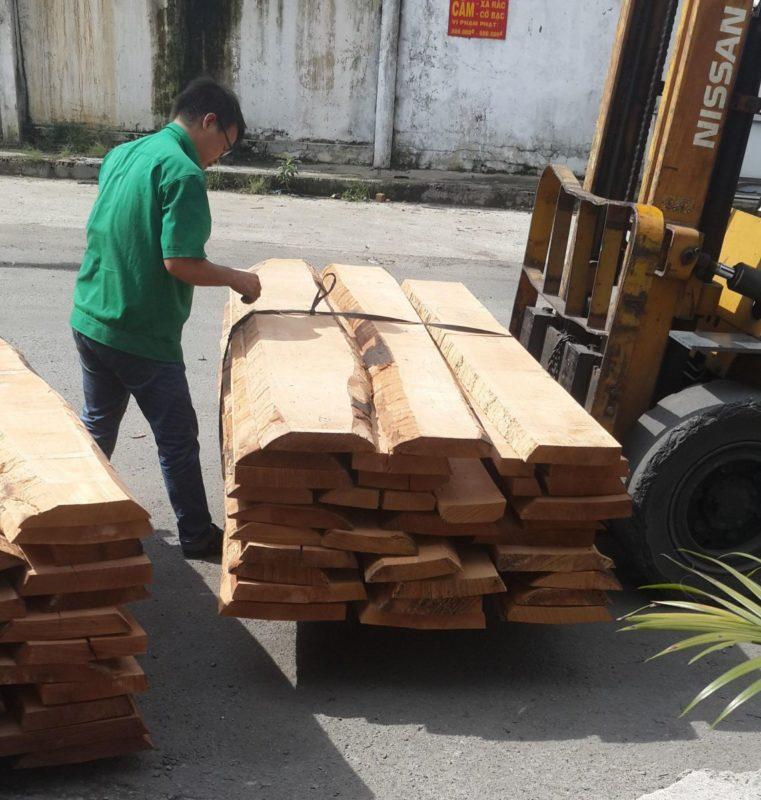 birch là gỗ gì