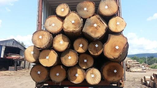 gỗ sồi nga thuộc nhóm mấy