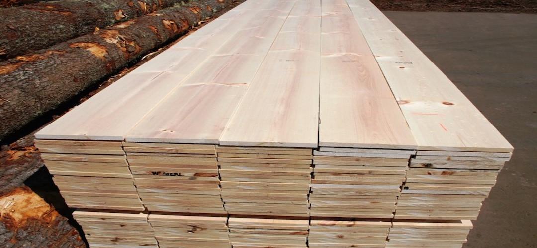 giá gỗ thông việt nam