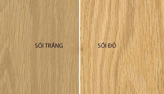 cách phân biệt hai loại gỗ sồi Mỹ
