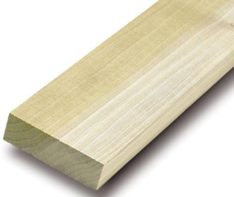 Gỗ bạch dương là gỗ gì