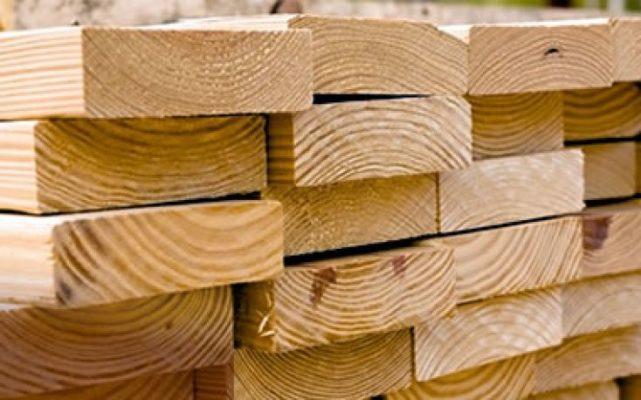 gỗ thông Mỹ