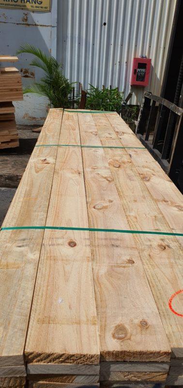 bán gỗ thông Newzealand