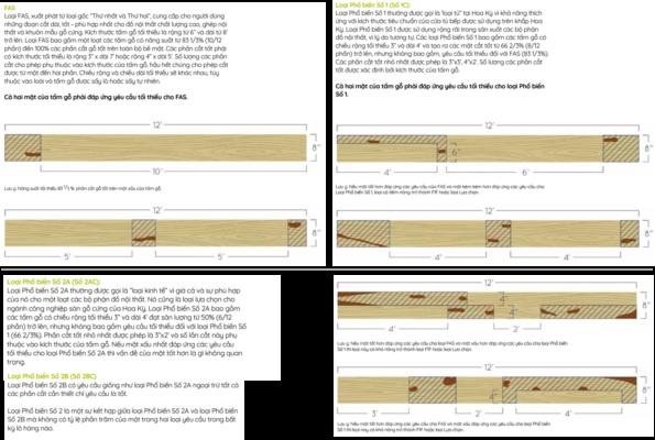 Phân hạng và quy cách gỗ xẻ Mỹ